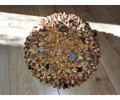 Bijzondere en decoratieve bol gemaakt met beukennootjes