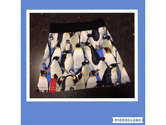 Een schattig pinguin rokje