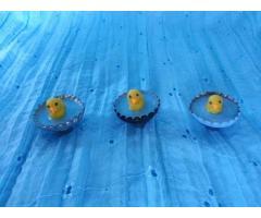 Magneet klein zwemmend eendje