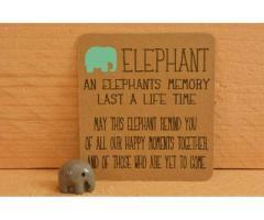 Olifanten herinneringsbeeldje - lief schoen/kerst cadeautje